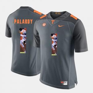 #1 Michael Palardy UT Jersey Grey Pictorial Fashion Mens 552613-259